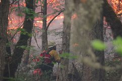 Southern Oregon fire tamed, but fears persist
